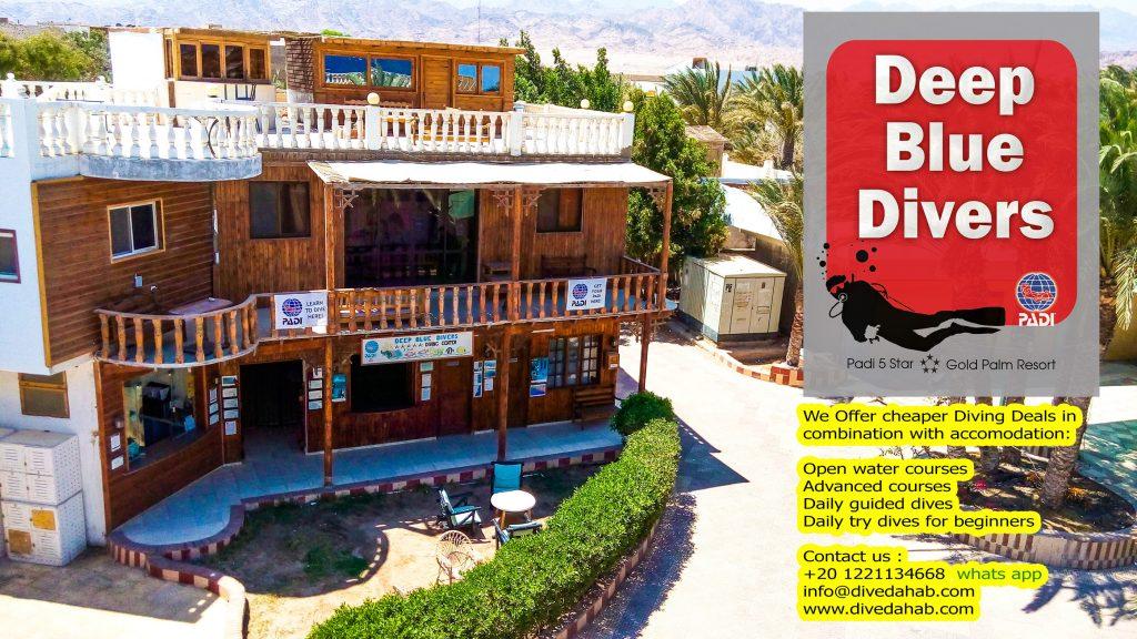 Deep Blue Hostel and diving center